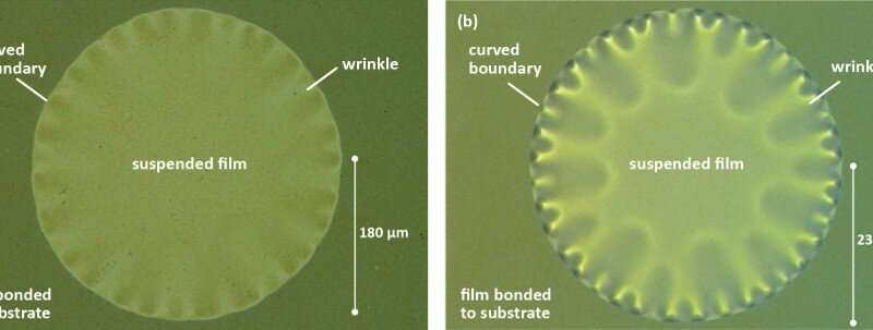 Scientists iron out the physics of wrinkling