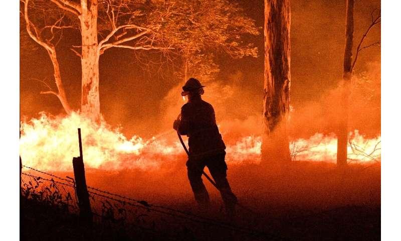 Los científicos saben por estudios anteriores que los incendios no se extienden por el paisaje de manera uniforme, y algunos lugares se dejan notablemente