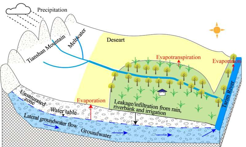 Scientists verify evolution features and drivers of groundwater in oasis of dried-up river in Tarim Basin