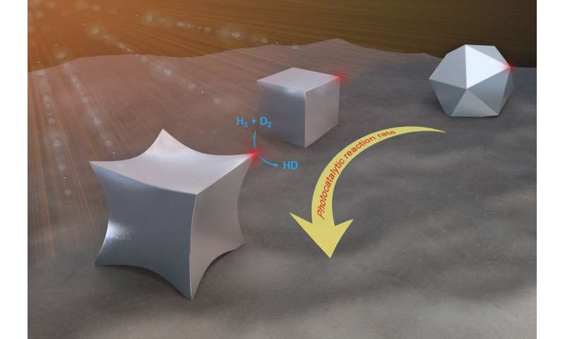 Shape matters for light-activated nanocatalysts