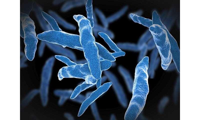 Short-course rifamycin-based regimens preferred for latent TB