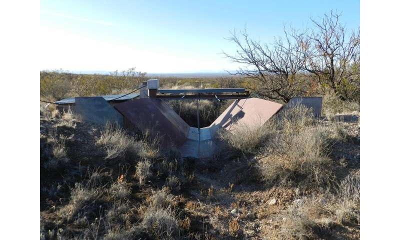 Shrub encroachment on grasslands can increase groundwater recharge