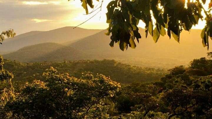Small-farm tech reduces deforestation, climate change