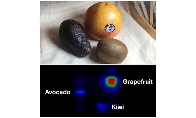 El mantel inteligente puede encontrar frutas y ayudar a regar las plantas.