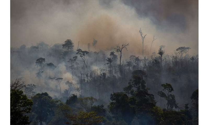 Smokes rises from forest fires in Altamira, Para state, Brazil, in the Amazon basinon August 27, 2019