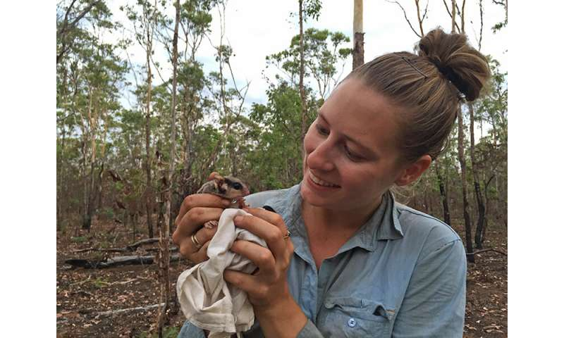 Solutions to northern Australia's mammal decline crisis