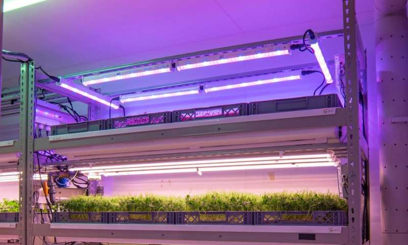 Space to grow, or grow in space -- how vertical farms could be ready to take-off