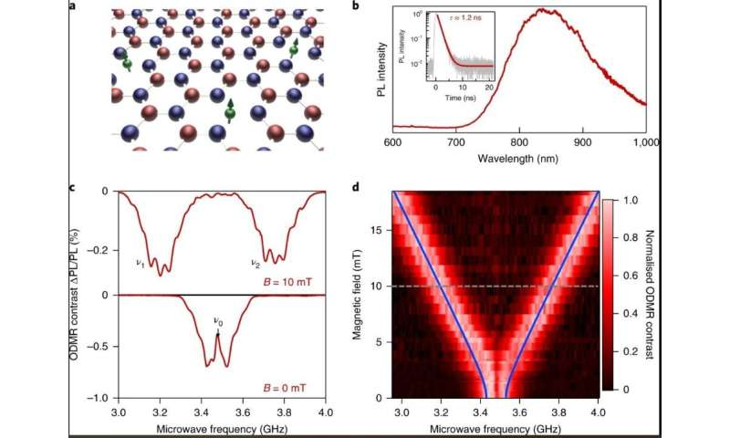 Spin-dependent processes in the 2D material hexagonal boron nitride