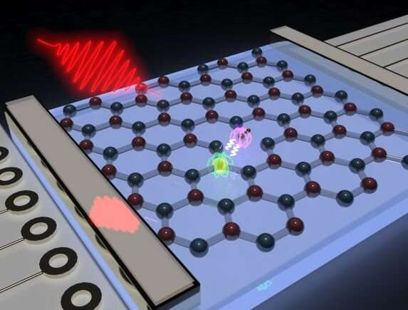 Study puts spin into quantum technologies