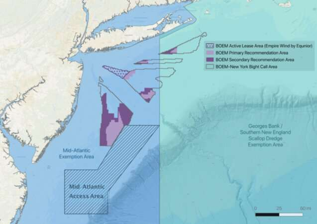 Success of New York offshore wind industry depends on collaboration with scallop fishery