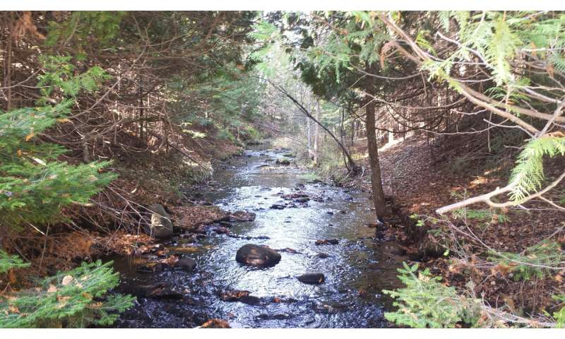Summer road trip finds small streams have big impacts on Great Lakes