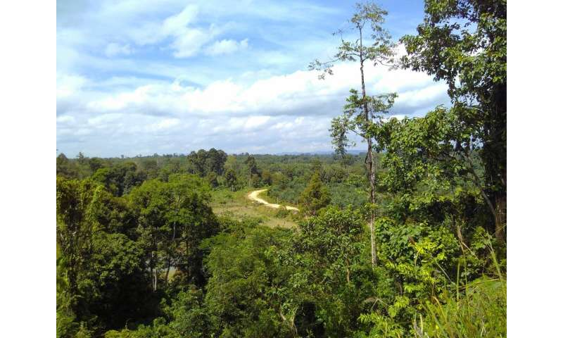 Sustainability claims about rubber don't stick