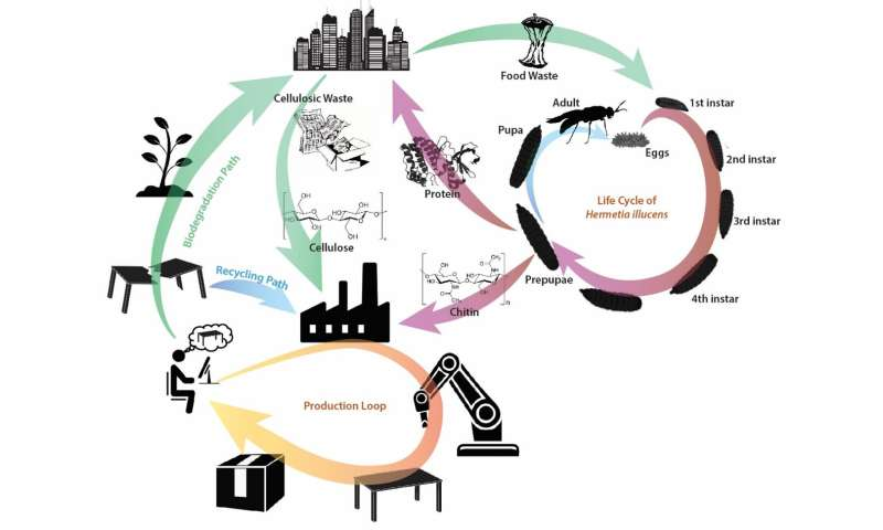 SUTD develops missing link to circular economy while tackling global waste