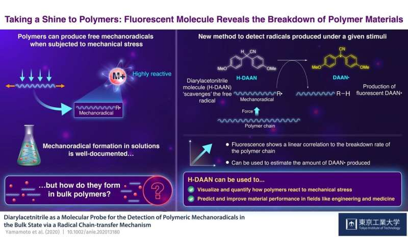 Taking a shine to polymers: Fluorescent molecule betrays the breakdown of polymer materials