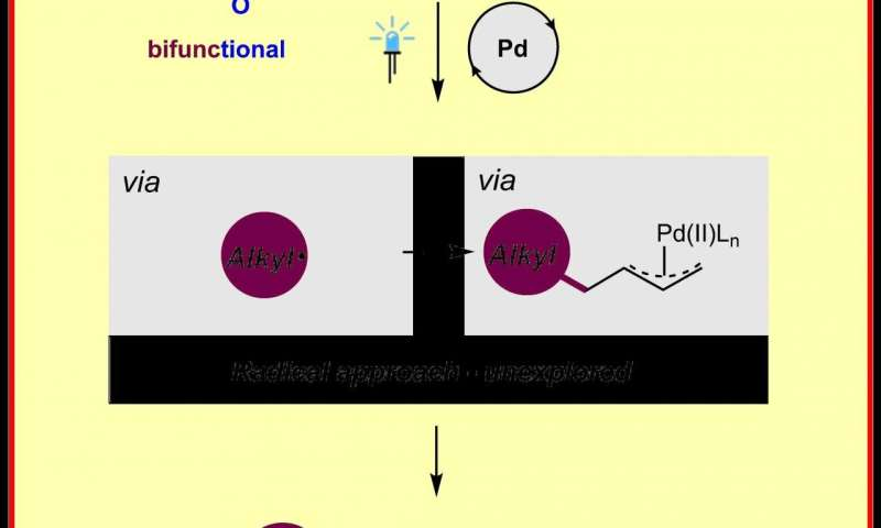 Teaching old transition metals new tricks: Chemists activate palladium catalysis by light
