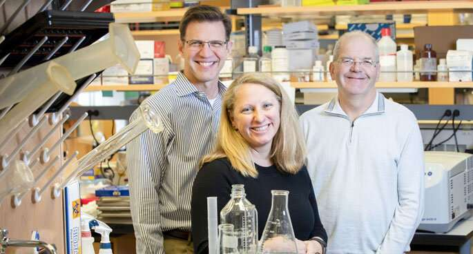 Team tracks integrin's role in lung function