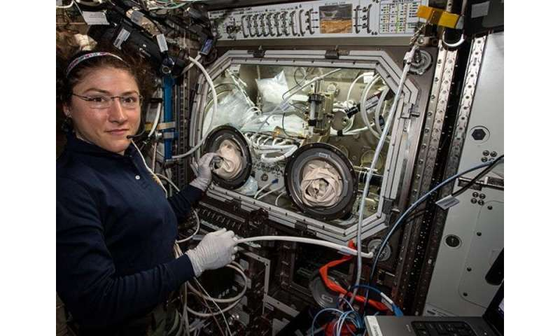 Technology used in space experiments could reveal key information about human health