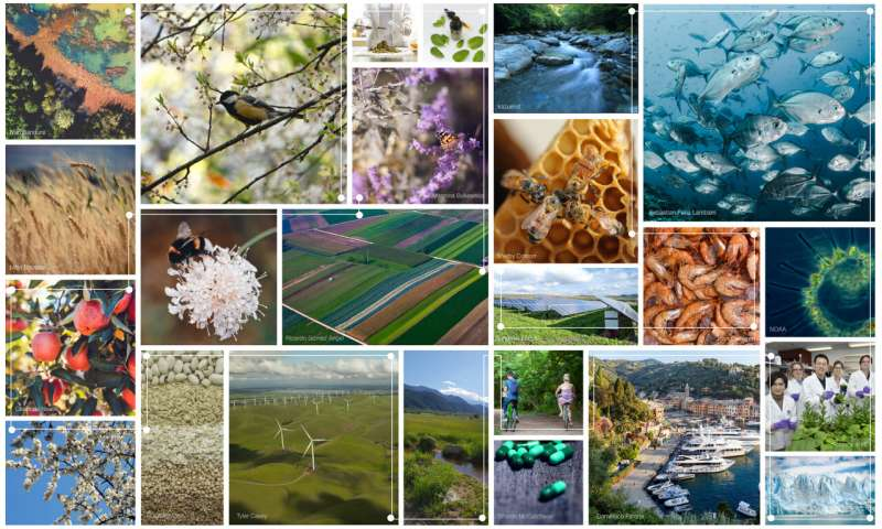 Ten years of ecosystem services matrix: Review of a (r)evolution