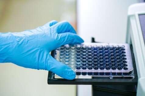 Test for antibodies against novel coronavirus developed at Stanford Medicine