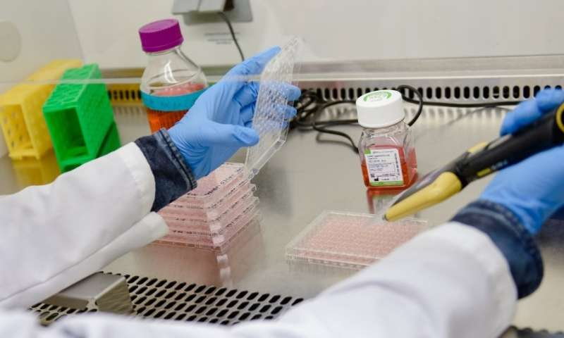 That's a wrap: protein 'burritos' stabilize vaccines