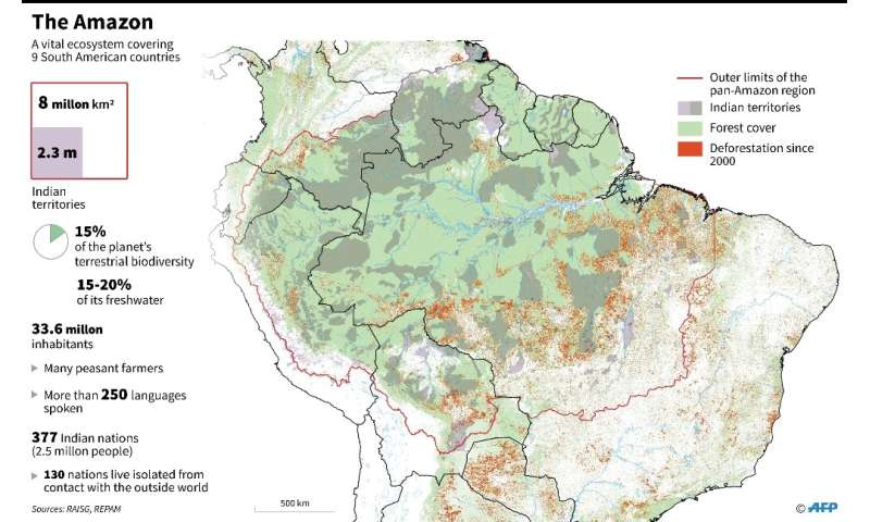 The Amazon's dense tropical canopy stores a huge amount of carbon and soaks up 25 to 30 percent of the CO2 humanity spews into t