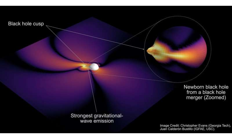 The black hole always chirps twice: Scientists find clues to decipher the shape of black holes