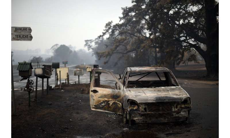 The fires, unprecedented for Australia in terms of duration and intensity, have claimed 28 lives and killed an estimated billion