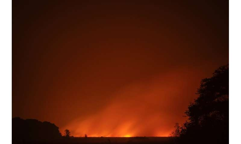 The main cause of the fires in the Pantanal is drought