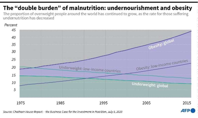 """The """"double burden"""" of malnutrition: undernourishment and obesity"""