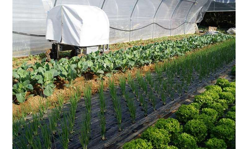 The robots weeding organic farms and patrolling for greenhouse pests
