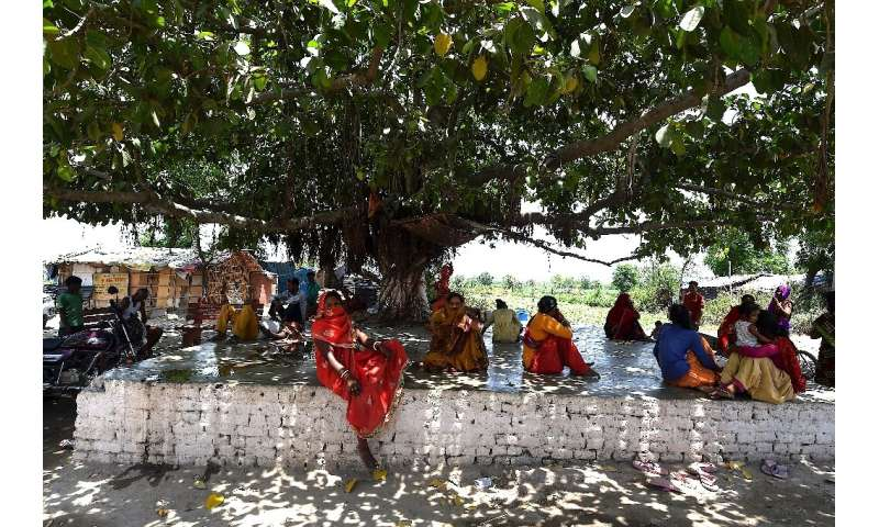 The shade of a giant tree provided an escape from the heat for some Delhi residents