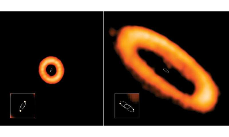 The strange orbits of 'Tatooine' planetary disks