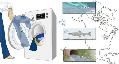 The widespread footprint of blue jean microfibers