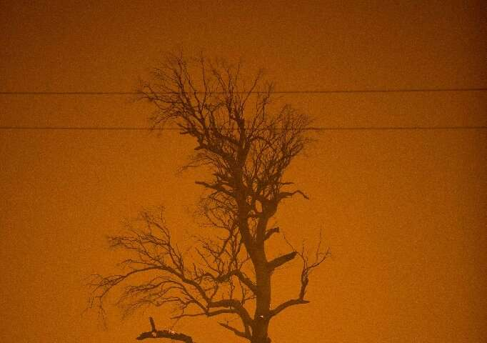 Tinder-dry conditions and strong winds have fanned a devastating fire season