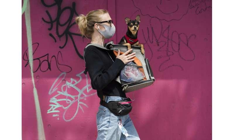 Toronto makes masks mandatory, citing US problems