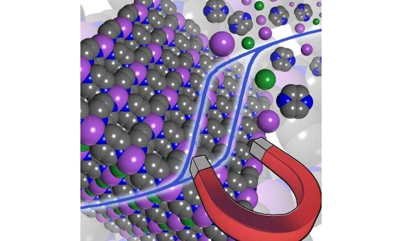 Towards next-generation molecule-based magnets