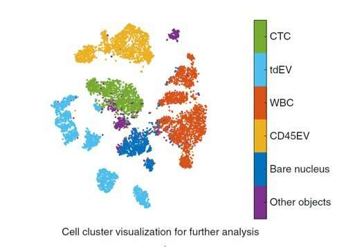 Tracking tumour cells and unraveling hidden information