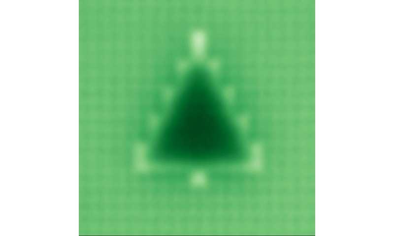 TU Delft physics student makes world's smallest Christmas tree