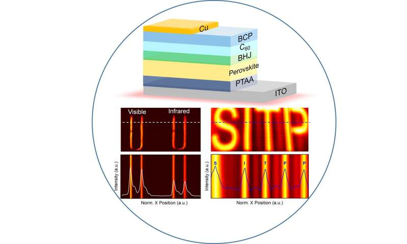 Ultrafast and broadband perovskite photodetectors for large-dynamic-range imaging