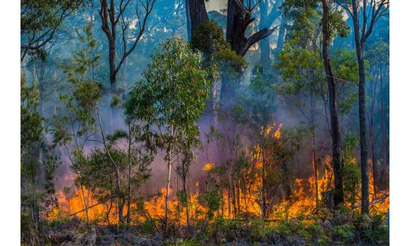 Under climate change, winter will be the best time for bush burn-offs – and that could be bad news for public health