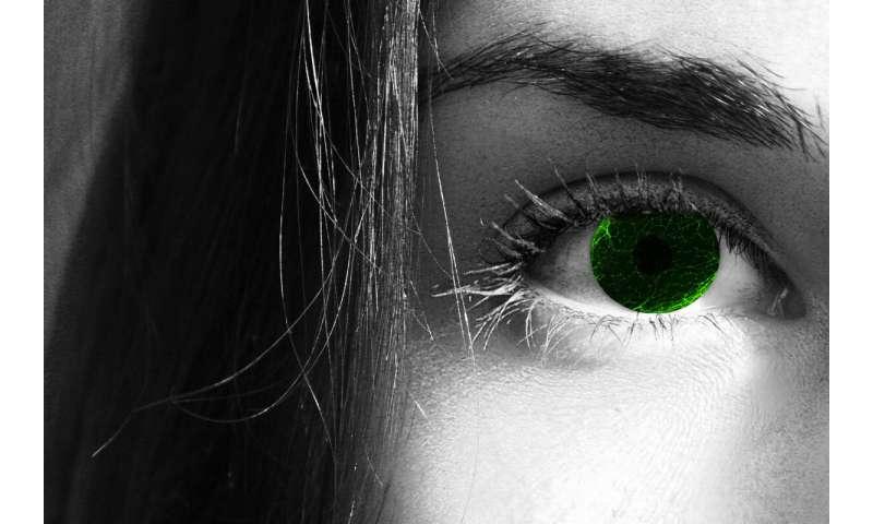 سلول های منحصر به فرد شوان: چشم ها آن را دارند