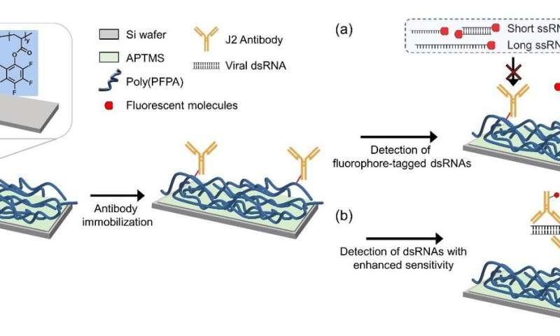 Universal virus detection platform to expedite viral diagnosis?