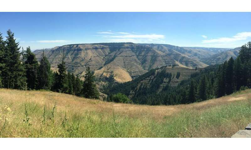 Uplifting of Columbia River basalts opens window on how region was sculpted