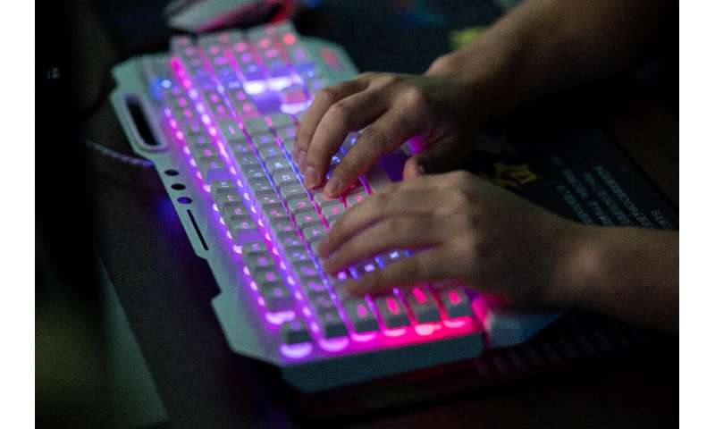 US federal prosecutors say the hackers worked to steal identities and video game technology, plant ransomware, and spy on Hong K