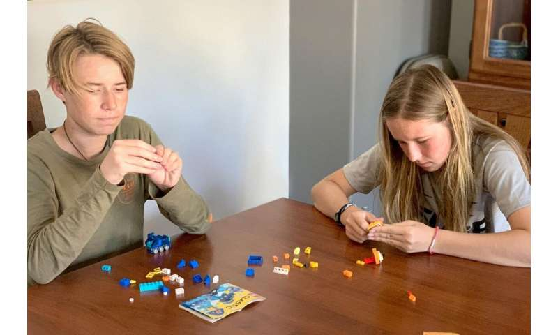 Using LEGO to test children's ability to visualize and rotate 3D shapes in space