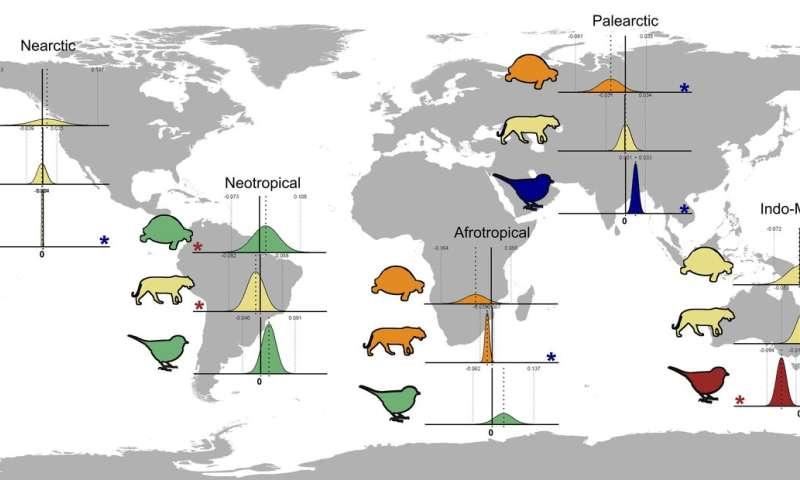 Biodiversidad de vertebrados: un rayo de esperanza
