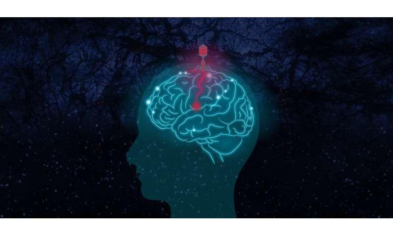 Viewpoint: Could disease pathogens be the dark matter behind Alzheimer's disease?