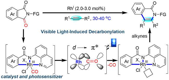 Visible light-induced bifunctional rhodium catalysis developed for decarbonylative coupling of imides with alkynes