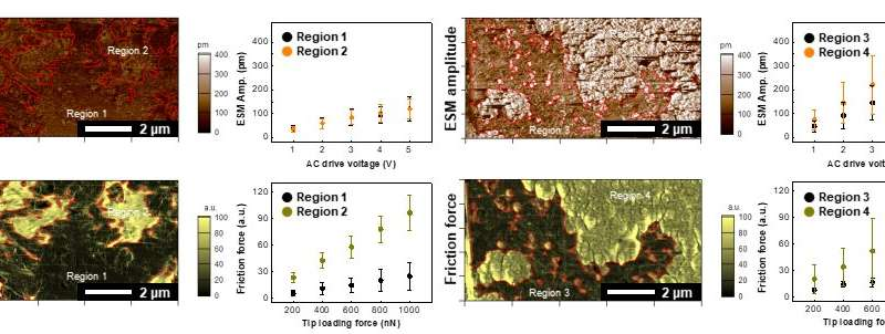 Visualization of functional components to characterize optimal composite electrodes