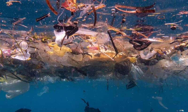 We estimate there are up to 14 million tonnes of microplastics on the seafloor. It's worse than we thought